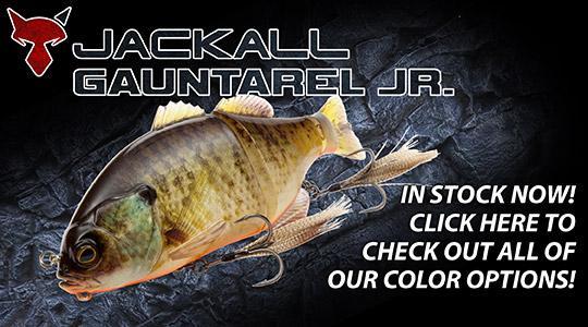 Jackall Gauntarel Jr available now!