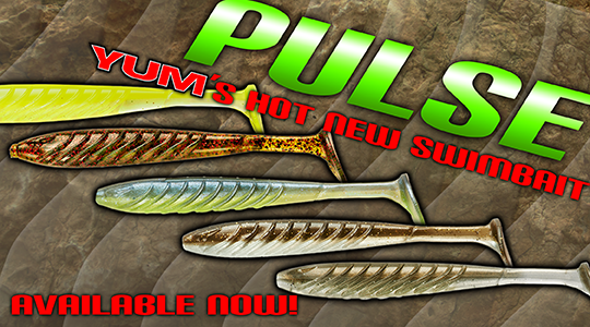 YUM Pulse Swimbait available now!